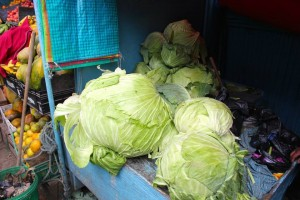 Giant cabbages at the Otavalo food market
